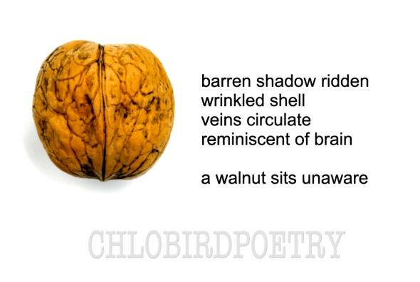 walnut unaware