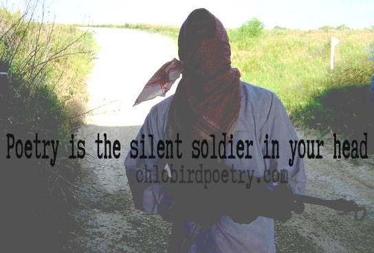 poetry is silent soldier