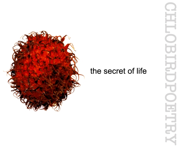 rabutan secret of life