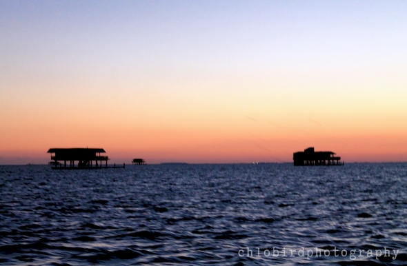Stiltsville - abandoned homes built on the sea...